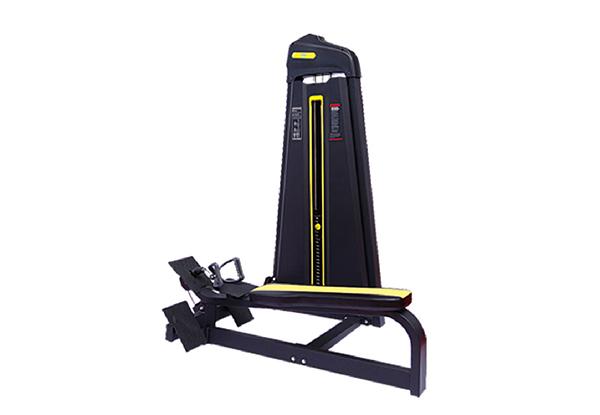 HQ-F1033坐式低拉背训练器